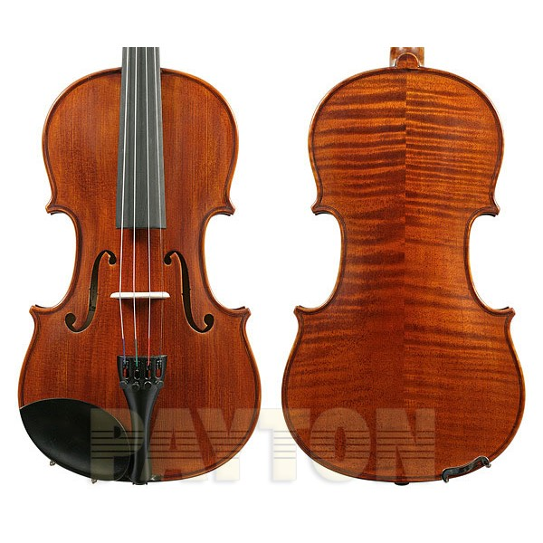 Enrico Student Extra Viola Outfit - 16 inch